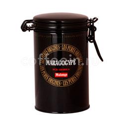 Кофе Malongo молотый Maragogype  250 гр (ж.б.)
